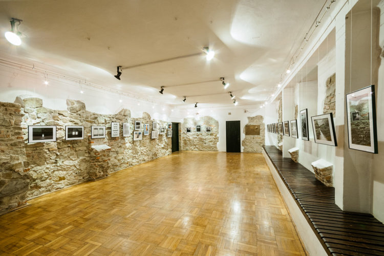 <em>Trees-Shadows-Dreaming</em>,<br>Karwacjans & Gładysz Museum,<br>Gorlice