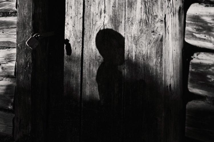 <em>Trees-Shadows-Dreaming</em>
